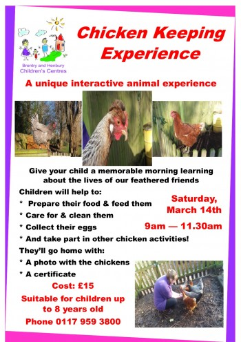 Chicken experience poster JPEG
